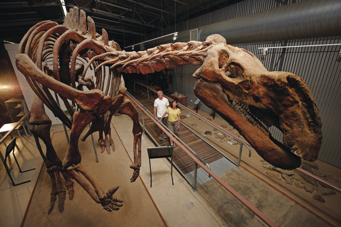 Flinders Discovery Centre   Outback Queensland