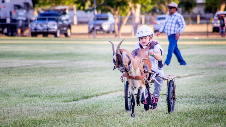 Goat Races in Barcaldine