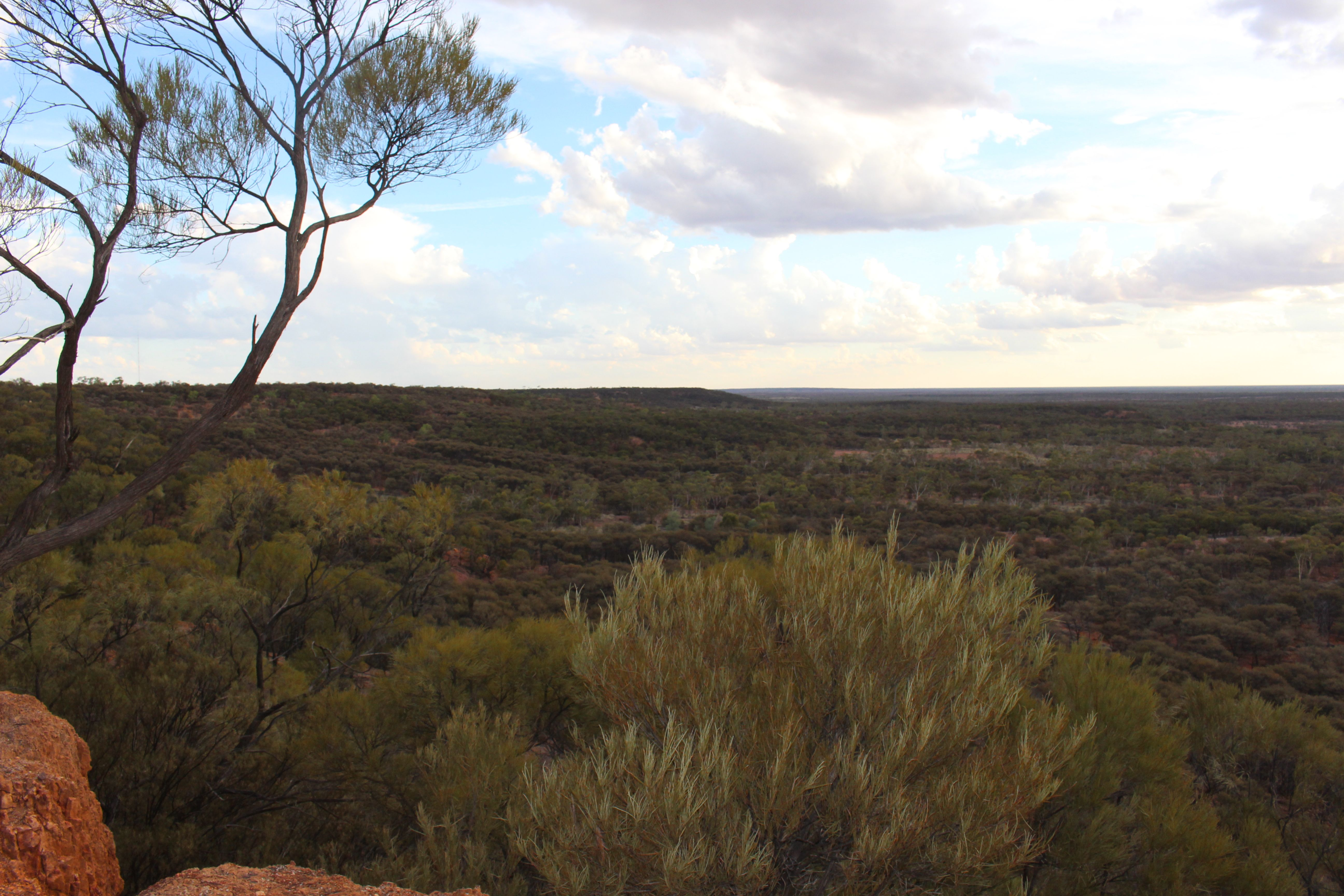 Swanvale Lookout3