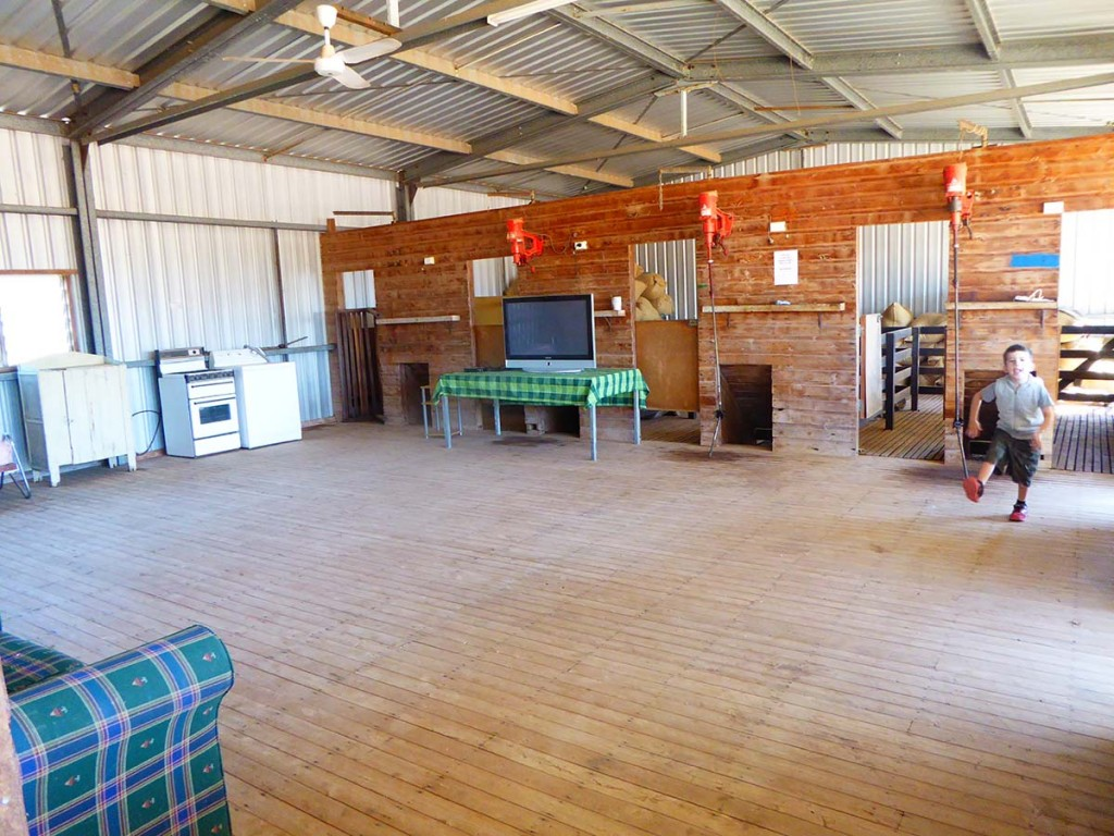 Bonus downs farmstay, Mitchell