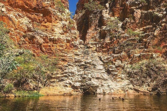 Fountain Springs Rest Area | 7 free camping spots in Outback Queensland