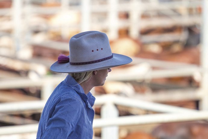Roma Sale Yards | 48 Hours in Longreach