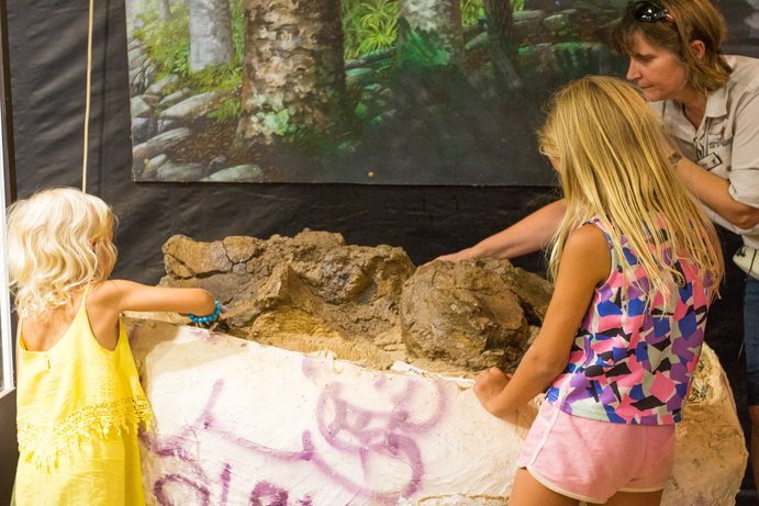 Australian Age of Dinosaurs   11 things you didn't know about Winton
