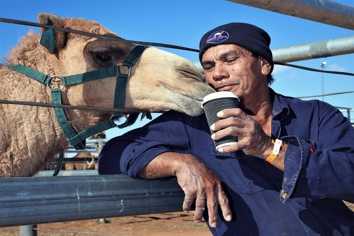 Boulia Camel Races | 8 things to make you smile at the Boulia Camel Races