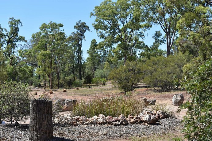Myall Park Botanic Garden | 7 camping spots along the Sunset Way