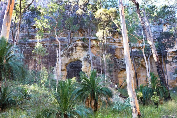 Bookbook Ecotours | 5 Places to stay around Carnarvon Gorge
