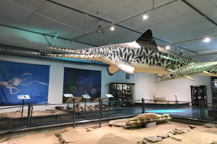 Kronosaurus Korner | 7 ways to see a dinosaur in Outback Queensland