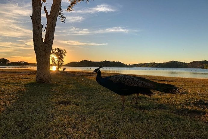 ake Moondarra | 8 reasons why you should visit Lake Moondarra