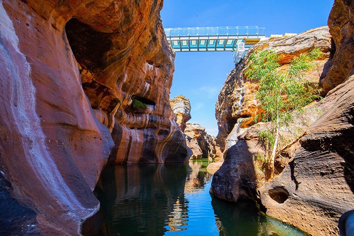 Cobbold Glass Bottom Bridge | What's new in 2020 in Outback Queensland